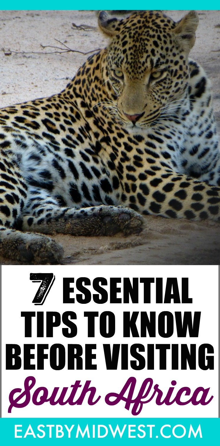 Visiting South Africa is my favorite travel experience to date. These tips will help you prepare for your own amazing trip to South Africa. You\'ll love it! #southafrica #capetown #gamedrive #safari #bucketlist #wanderlust #amazingplaces