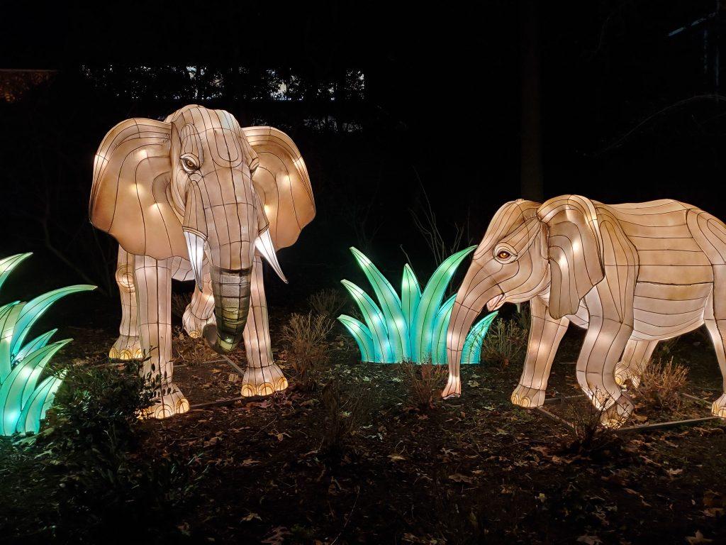 Zoo Lights - Smithsonian National Zoo