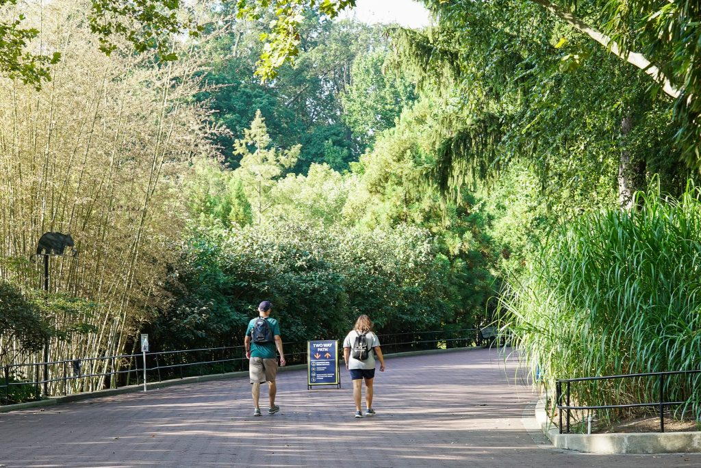 Wear sunscreen at the Smithsonian National Zoo