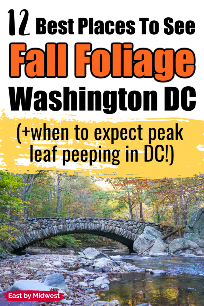 Best Places to See Fall Foliage in Washington DC