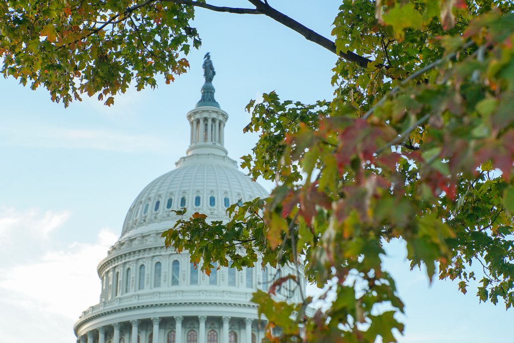 US Capitol dome in the fall