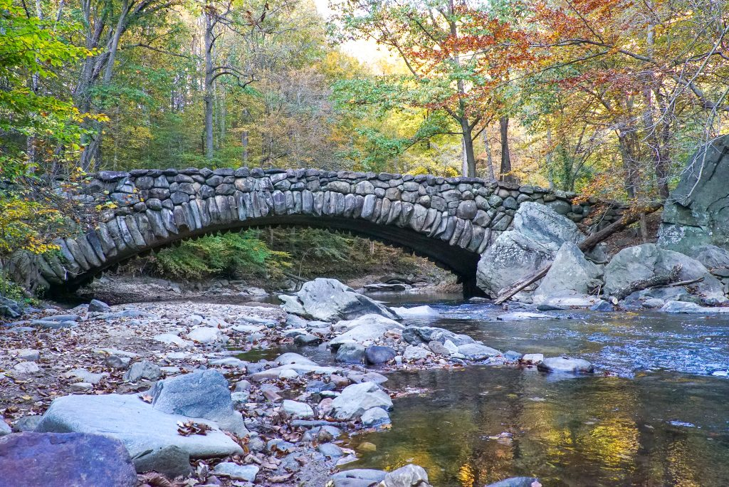 Rock Creek Park is one of the best places to see fall foliage in Washington DC