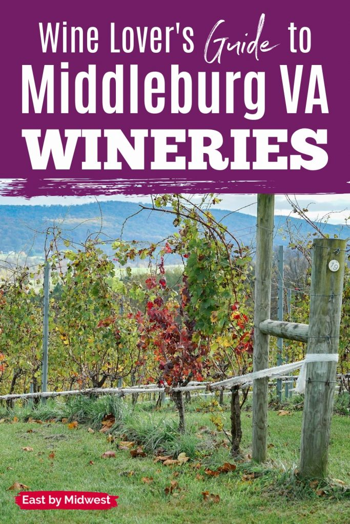 50 West Winery in Middleburg VA