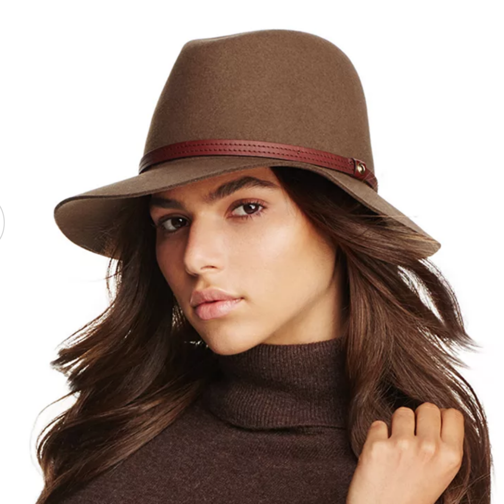 Dark brown hat on woman with brown hair