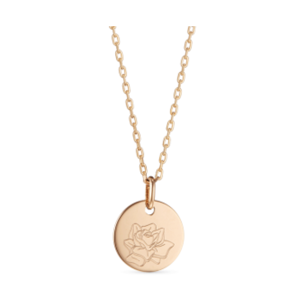 Gold necklace with round coin